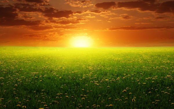 peaceful-spring-sunset-600x375